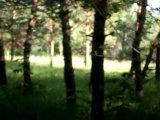 Обезьяноподобный монстр на Шайтан Озере около деревни Окунево